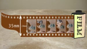 illustration of a 35mm roll of film showng half frame negatives